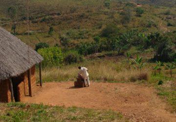 CAMEROUN : ANGUS ABRAHAM FUNG, UN TRADUCTEUR DE LA BIBLE ASSASSINÉ