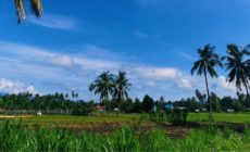 INDONESIE/ DES CHRETIENS MASSACRES A LEMBANTONGOA